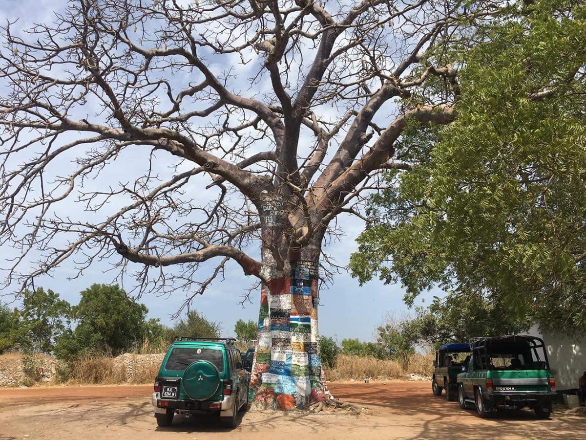 Maalattu puu