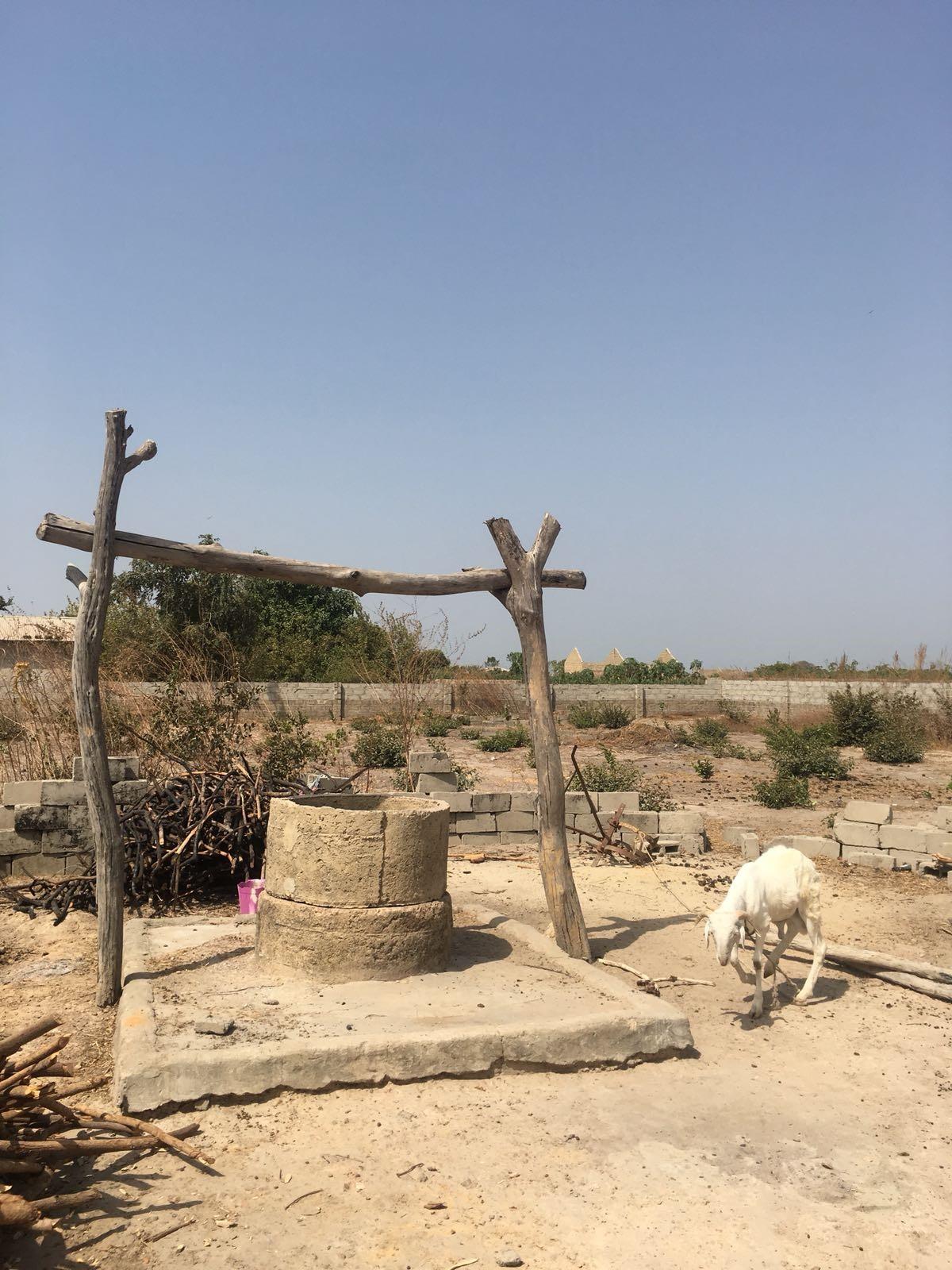 Gambia. Kuivuus. Suvi